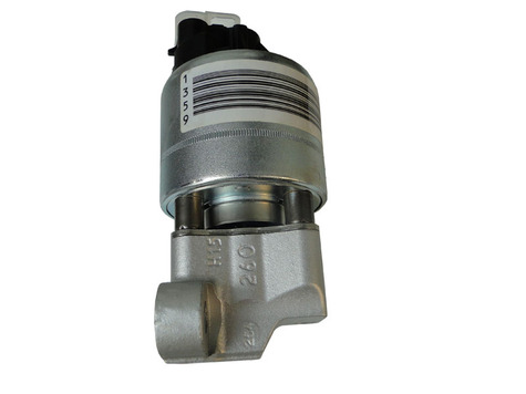 SPECIAL OFFERS OF DELPHI EGR VALVE
