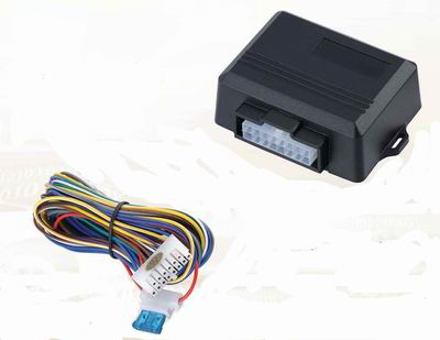 Car Electronic Security Products