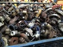 Used Caterpillar Turbochargers