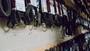 Serpentine belt timing belt Bondo Dayco Gates Good year - photo 1