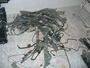 Genuine new old stock daewoo parts - photo 2