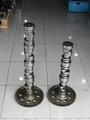 camshafts and crankshafts